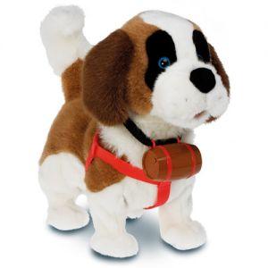 Собака Samby