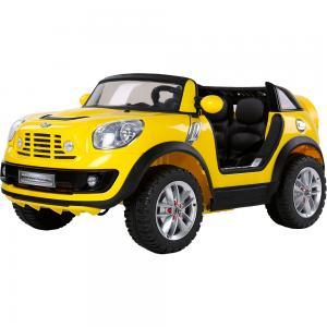 Детский электромобиль Mini Beachcomber (2 места, до 40 кг, 120 см)